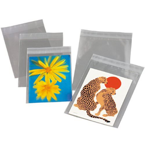 Jam paper a10 6 14 x 9 58 cello sleeves envelope with self jam m4hsunfo