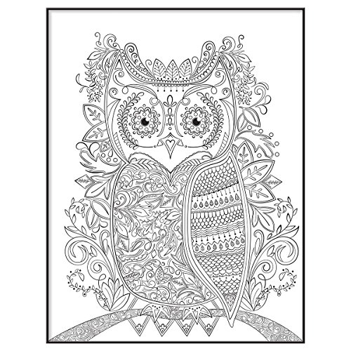 MCS Time Out Color In Framed Adult Coloring Page With Owl Design